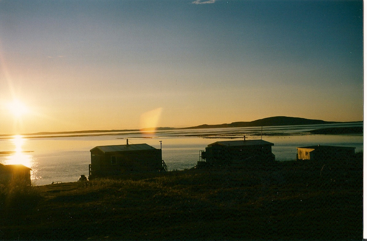 Download the full-sized image of Midnight sun -- photograph